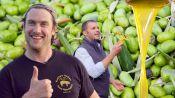 Brad Makes Olive Oil (In Italy!)