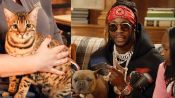 2 Chainz Pets a $25K Cloned Cat | Most Expensivest | GQ & VICE TV