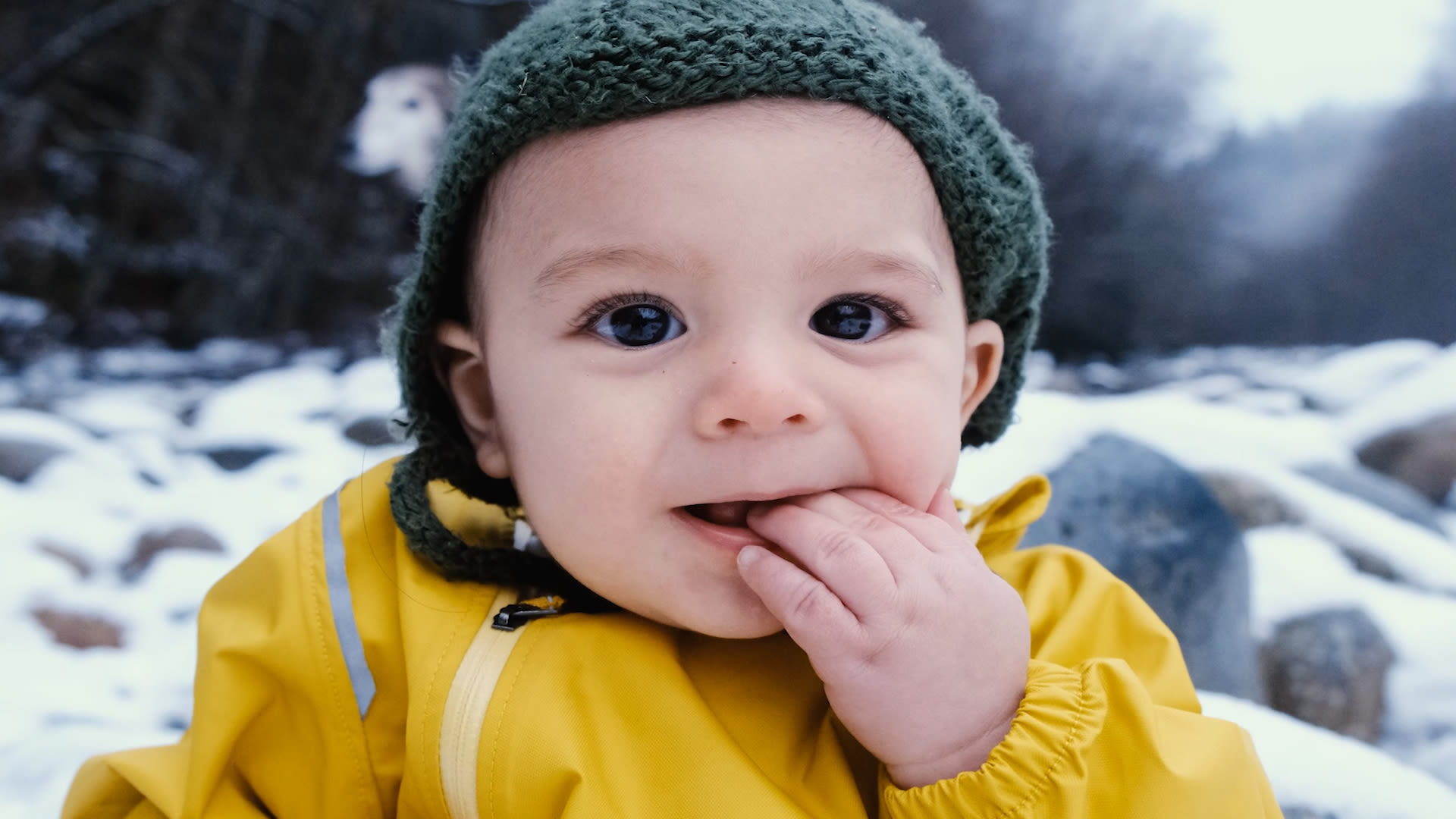 A Baby's First Sensations of the Natural World