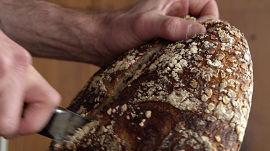 New Bread, Ancient Grains