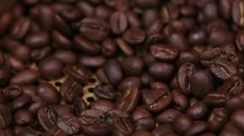 Gevalia: Roasting Coffee Beans to Perfect a Smooth Finish