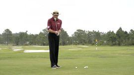David Leadbetter's A Swing: The Setup