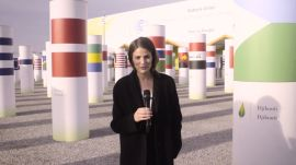 Behind the Scenes of the Paris Climate Talks With Cameron Russell