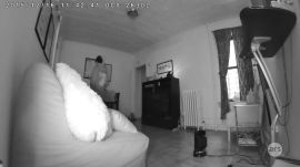 D-Link Security Camera (test clip1)