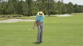 David Leadbetter: Wristless Chips