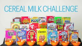 Experts Try 25 Cereal Milks