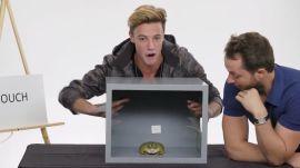 Cameron Dallas Touches a Frog, a Dead Octopus & Other Weird Stuff