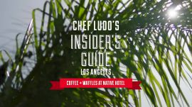 Insider's Guide Access: A First look at Chef Ludo's Coffee + Waffles at Native Hotel