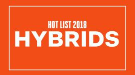Best New Hybrids 2018