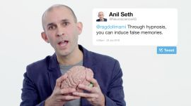 Neuroscientist Anil Seth Answers Neuroscience Questions From Twitter