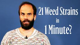 How Many Weed Strains Can High Maintenance's Ben Sinclair Name In A Minute?