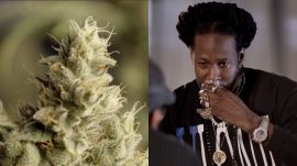 2 Chainz Taste Tests Expensive Weed