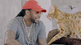 2 Chainz Finds Out How Cats Mate