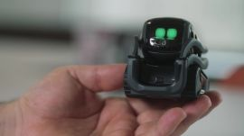 Vector, Anki's New Home Robot Sure Is Cute. But Can It Survive?