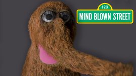 Mr. Snuffleupagus Reads Mind-Blowing Facts About the Universe