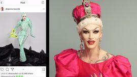 Sasha Velour Breaks Down Her Favorite Instagram Follows