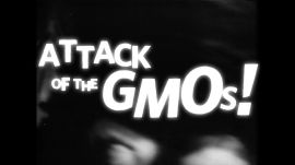 Teach the Conspiracy: GMOs