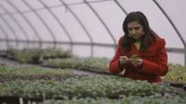 Maneet Chauhan is Building a Food and Drink Empire