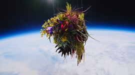The Japanese Artist Who Sends His Work to Space