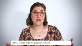 Mayim Bialik Answers 50 of the Most Googled Neuroscience Questions