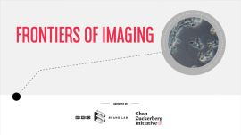 Frontiers of Imaging | WIRED Brand Lab