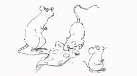 How to Draw the Rats and Pigeons from Your Nightmares