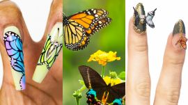 3 Nail Artists Transform Their Nails Into Butterflies