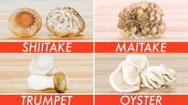 Picking The Right Mushroom For Every Recipe - The Big Guide