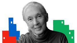 Jane Goodall on the Life Lessons She Learned from Chimps