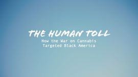 The Human Toll: How the War on Cannabis Targeted Black America