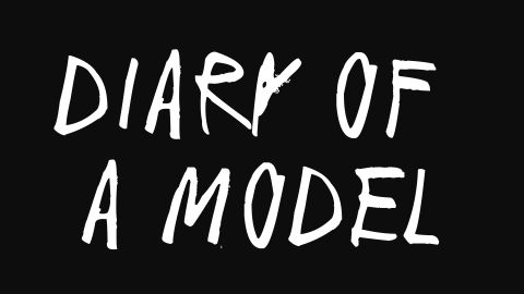 Diary of a Model