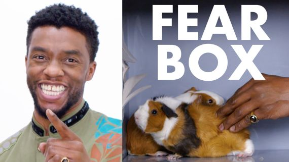 Black Panther Cast Touches a Chameleon, a Guinea Pig, and Other Weird Stuff