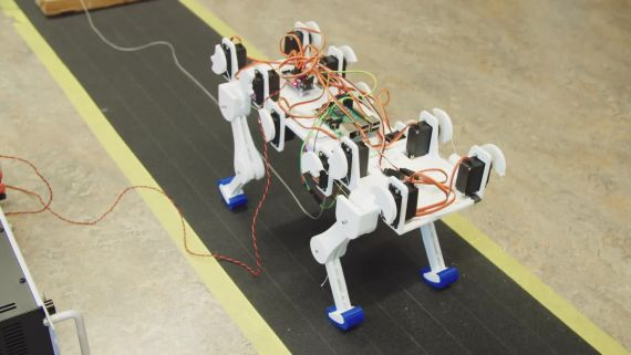 Inside the Lab That's Building a Robot Cat