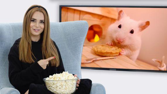 Rosanna Pansino Reviews the Internet's Most Popular Food Videos   Food Film School