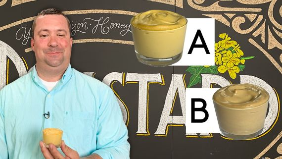 Mustard Expert Guesses Cheap vs Expensive Mustard