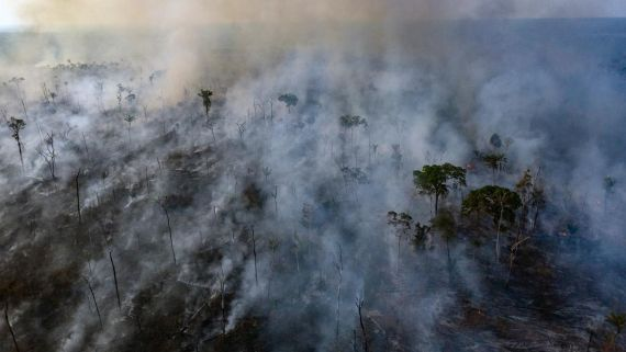 Why the Amazon Fires Are Surging