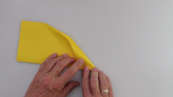 Learn to Fold the 'Phoenix' Paper Airplane