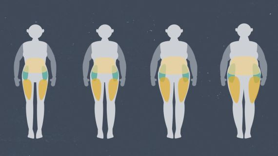 The Science Behind Weight | WIRED Brand Lab