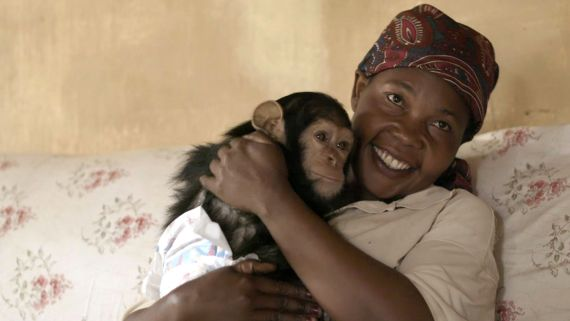 A Woman and Her Chimpanzees Heal Together After Trauma