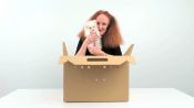 Grace Coddington Unboxes the Perfect Furry Holiday Gift (Hint: It's Not a Cat)
