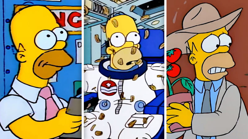 Watch Each And Every Every Job Homer Simpson S Ever Had Wired Video Cne Wired Com Wired In some average american city, there's an average garbage dump that is host to your average miniature insect metropolis. watch each and every every job homer