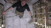 NASA Twin Study: How Space Changes Our Bodies
