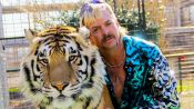 Why Captive Tigers Can't Be Reintroduced to the Wild